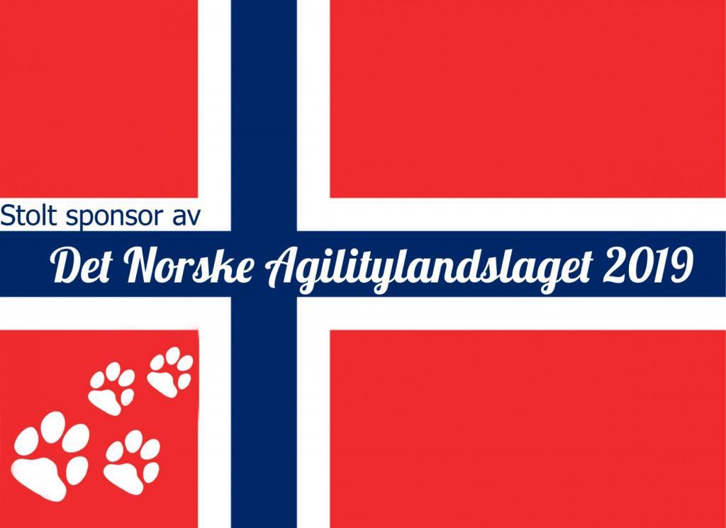 Det norske Agilitylandslaget 2019